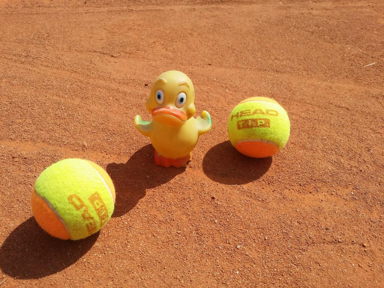 Unser Camp-Diary aus der Schüttler Waske Tennis University